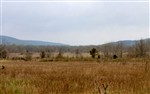 Oklahoma, Pittsburg County, 5.01 Acre Daisy Meadows. TERMS $190/Month