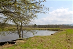 Oklahoma, Pittsburg County, 5.16 Acre Daisy Meadows, Pond, Electricity.TERMS $250/Month