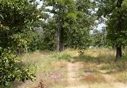 Oklahoma, Pushmataha County, 5.79 Acre Lake View Private Reserve. TERMS $365/Month