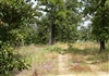 Oklahoma, Pushmataha County, 8.68 Acre Lake View Private Reserve. TERMS $540/Month