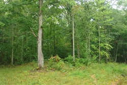 Tennessee, Wayne County, 7.94  Acre Sugartree Falls. TERMS $460/Month