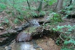Tennessee, Wayne County, 6.52  Acre Sugartree Falls, Creek, Waterfall. TERMS $170/Month