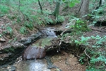 Tennessee, Wayne County, 7 Acres Sugartree Falls. TERMS $220/Month