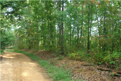 Tennessee, Wayne County, 20.97  Acre Sugartree Falls. TERMS $460/Month
