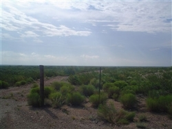 Texas, Reeves County, 70 Acres near Pecos. TERMS $370/Month