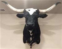 Longhorn Mount - White & Black