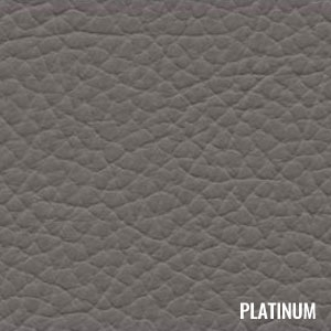 Katzkin Color Platinum