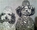 2 Darling Gray & White Poodles Vintage Handkerchief Hankie Sweet