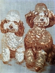 2 Darling Brown & White Poodles Vintage Handkerchief Hankie Sweet