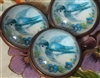 Crystal Glass Dome Button Reproduction Antique Bluebird Button Lovely