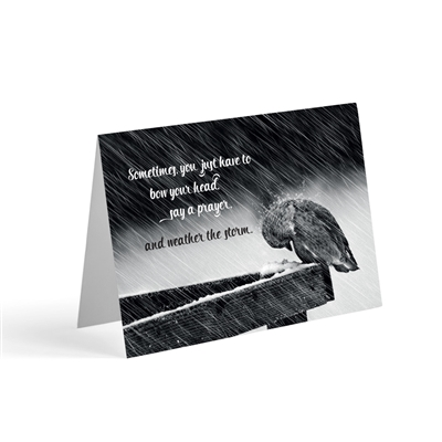 When it is difficult to come up with just the right words, our biblical greeting cards say it all. Based on Psalm 57:1