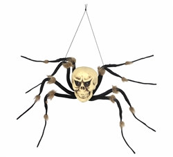 Spider Skeleton Creepy Creature