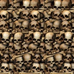 Planning to turn your house into the scariest haunted house on the block? Setting up for a night of adventure gaming?  This high quality, high resolution Catacombs Backdrop on your wall will set the perfect ambiance.