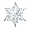 Silver Metallic Winter Snowflake