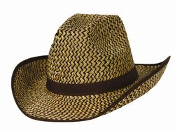 Western Hat w/Brown Trim and Band