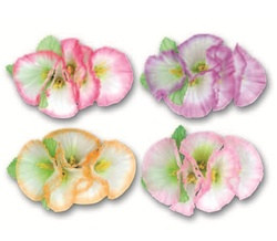 Morning Glory Flower Hair Clip