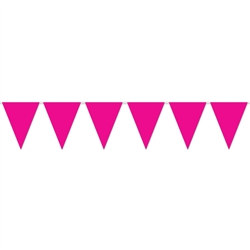 Cerise Indoor/Outdoor Pennant Banner