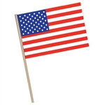 Plastic American Flag (4 in x 6 in)