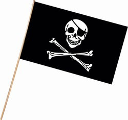Plastic Pirate Flag (11 in x 17 in)
