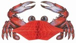 Art-Tissue Crab