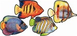 Coral Reef Fish Cutouts