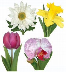 Classic Flower Collection (4/pkg)