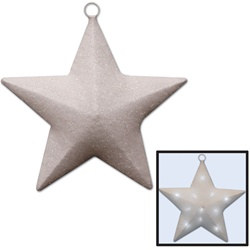 White Light-Up Star