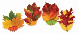 Fall Leaf Cutouts (4/Pkg)