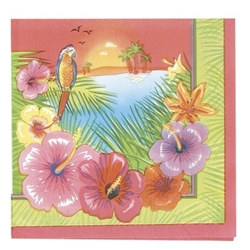 Luau Party Beverage Napkins (16/pkg)