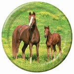 Wild Horses Lunch Plates