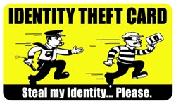 Identity Theft Plastic Pocket Card (1/Pkg)