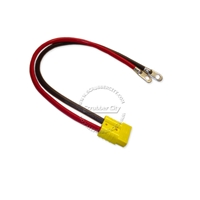 "Battery Cable Anderson connector SB50 4 Gauge 24"" inches eyelets 3/8"" .12 volt applications red connector universal battery cable, universal eyelets"