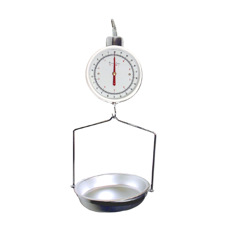 Stainless Steel Hanging Scale
