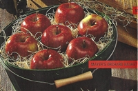 Mayer's Orchard Basket