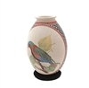 Parrot & Hummer Pot Genuine Hand Coiled Mata Ortiz Pottery