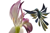 Hummingbird and Orchids Genuine Oaxacan Wood Carving