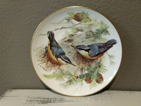 Bird Collector Plate Vintage Corsican Nuthatch European Songbirds Collection on Fine China by Tirschenreuth - 1986
