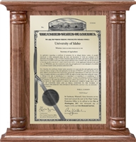 "Patent Plaques Custom Wall Hanging Column PVP Plaque - 12"" x 12.5"" Gold and Walnut."