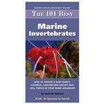 The 101 Best Marine Invertebrates Scott Michael