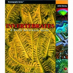 Invertebrates: A Quick Reference Guide (Hardcover)