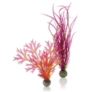 BiOrb Red Pink Plant Pack