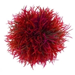 BiOrb Red Colour Ball