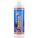 CaribSea Purple-Up Coralline Algae Accelerator 16 oz