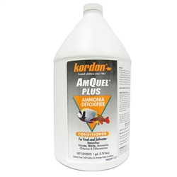 Kordon AmQuel Plus 1 gallon