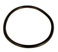 Replacement Cap O-Ring for Pentair Aquatics (Rainbow Lifegard)