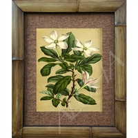 """Tahitian Gardenia"" Art Print. Scientifica Art Print. Circa 1800's. Vintage Hawaiiana. Matted in a Natural Grass Mat and framed in a handmade Natural Bamboo Frame. Bamboo Frame is hand sanded and stained twice. Made in California, USA. Dimensions;..."