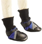 Guardian Gear All Weather Dog Boots Blue