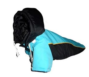 Dog Winter Jacket - Black & Blue