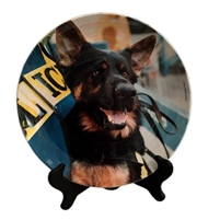 Ground Zero Recovery Dogs Porcelain Plate