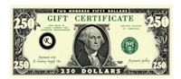 Gift Certificate $250 Gift Card for Use on Any of our Products or Services